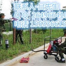 小型植桩机哪家的好_河北五星厂家专业生产打桩机