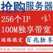 国内抢购C段电信联通多IP服务器耐克抢购专用256IP