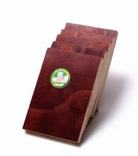 覆膜建筑模板覆膜建筑模板价格_优质覆膜建筑模板批发/图片
