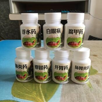 龟感冒药,浮水药,肺炎药,腐甲药,肠胃炎药