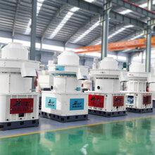 江西供应高产木屑颗粒机节能燃料颗粒成型设备价格图片