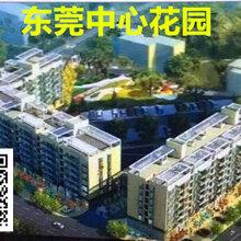 东莞黄江村委统建搂中心花园图片