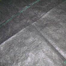 各种规格防草布园艺布