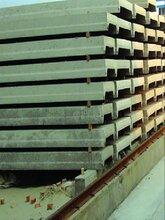 預應力混凝土糧庫屋面板有什么優勢圖片