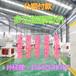 大庆立式环模颗粒机山东恒美百特专业制造可分期付款购颗粒机