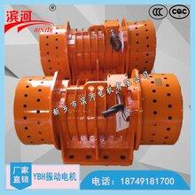YBH-20-4系列振动电机河南滨河厂家质量有保证图片