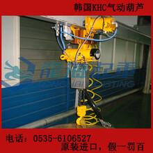 KA1S-025进口气动葫芦价格,石油设备气动葫芦,现货