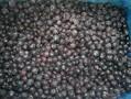 24000元/吨冷冻蓝莓广州批发价图片