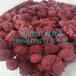 冷冻覆盆子(冷冻树莓)果广州供应