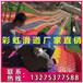 景区度假村农家乐游乐项目规划彩虹滑道七彩滑道彩虹滑梯
