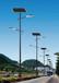 6米LED太阳能路灯道路照明新农村路灯路灯改造工程