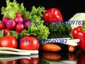 2016年春节年货福利有机蔬菜组装大礼箱总经销商电话图片