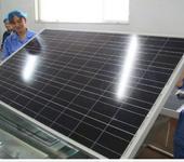 320W多晶太阳能电池板厂家并网电站用320W电池板组件