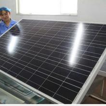 青岛265W多晶高效率太阳能电池板批发厂家图片
