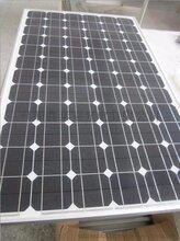 超大功率350W单晶硅太阳能电池板太阳能光伏电站图片