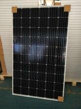 单晶硅360W36V太阳能电池板价格图片