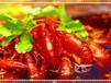 长沙小吃正宗口味虾哪里学麻辣小龙虾技术培训