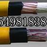 鄂尔多斯MSLYFYVZ75-9漏泄通讯电缆