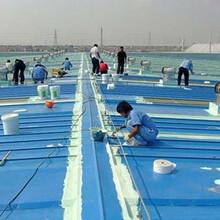 卫生间不砸砖防水楼顶防水屋面防水阳台防水