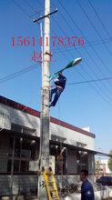唐山太阳能路灯价格图片