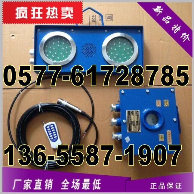 ZSB127矿用煤矿井下水仓高低水位报警器/语音报警器127V