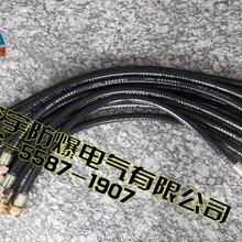 BNGⅡ-700G11/2(內)/G11/2(外)防爆撓性連接管圖片