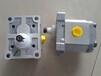 Turolla齿轮泵丹弗斯SNP2NN/4,0RN05AAP1B6B5NNNN/NNNNN
