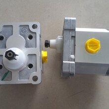 Turolla齿轮泵丹弗斯SNP2NN/4,0RN05AAP1B6B5NNNN/NNNNN图片