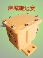 纵向撕裂检测器XLZL-B一常闭图片
