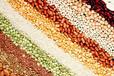 陕西咸阳低聚糖代餐粉代加工颗粒剂粉剂营养食品委托生产企业