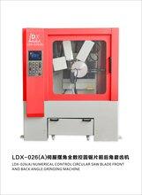 LDX-026(A)伺服摆角全数控前后角磨齿机图片