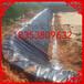 龙港高位池养虾防渗膜国标黑色光面幅宽6米厚度0.35mm一件300平米厂家批发价格