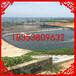 马坪养虾hdpe防渗膜0.35mmhdpe土工膜价格