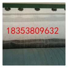 西藏gcl膨润土防水毯幅宽6米克重5500克一件180平米厂家直销