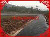 石嘴山hdpe防渗膜国标黑色幅宽6米厚度0.5mm一件300平米厂家批发价格