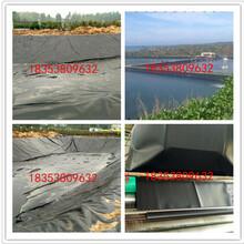 重庆藕池防渗膜8米0.4mm一件400平米厂家直销