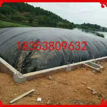 休宁县沼气池防渗膜hdpe土工膜1.5mm价格