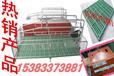 四川出售双体产床喂猪设备厂家直销质量保证