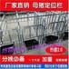 四川养猪设备母猪单体定位栏厂家制作生产质量好价位低