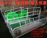 重庆猪设备产床,母猪分娩设备全国招代理