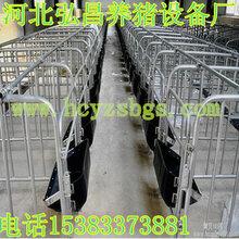 贵州猪设备定位栏制作厂家制作质量放心