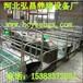 贵州养猪设备产床,母猪生产设备厂家直销