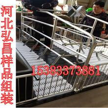 重庆彭水母猪产床厂家直销质量放心