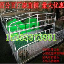 母猪位复合板母猪产床厂家直销质量放心