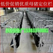 定位栏养殖设备厂家年底清仓处理数量有限