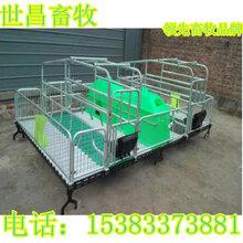 厂家直销便宜耐用母猪产床数量有限预购从速