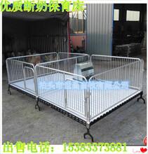 保育床断奶猪设备选世昌畜牧厂家直销