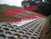 專業高速護坡模具廠家出售六棱塊護坡模具廠家