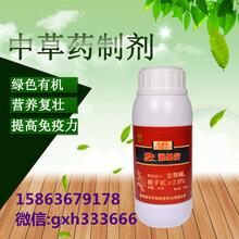 梨樹炭疽病農藥靚果安+大蒜油圖片