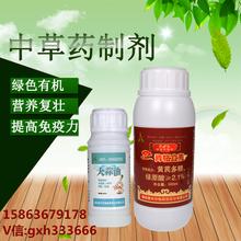 辣椒茎基腐病喷雾+灌根防治农药青枯立克图片
